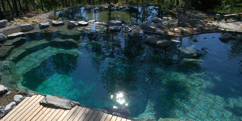 A review of five different natural swimming pool (NSP ...