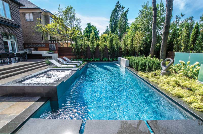 Backyard pool, spa, and landscape project
