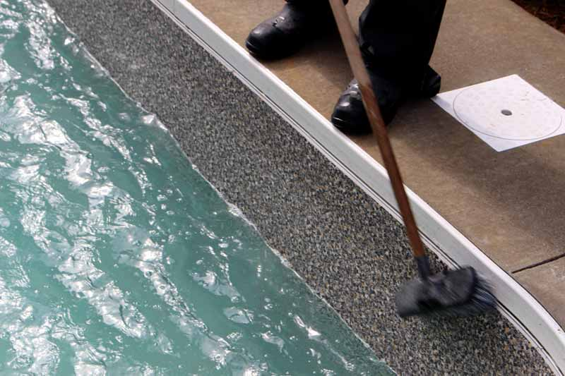 Having staff brush the pool walls on a weekly basis removes anything that may have started to grow on them.