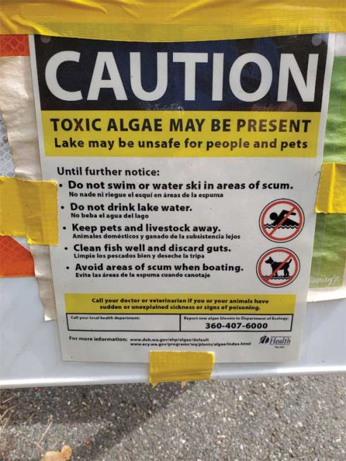 In August, MSN Lifestyle reported on a number of signs that were posted at lakes across the U.S. warning of toxic algae.