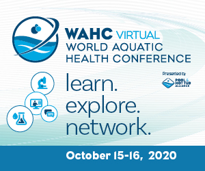 The virtual World Aquatic Health Conference (WAHC), presented by the Pool & Hot Tub Alliance (PHTA), will offer attendees access to content 24-7, including 35 educational sessions that can be viewed at one's own time and pace.